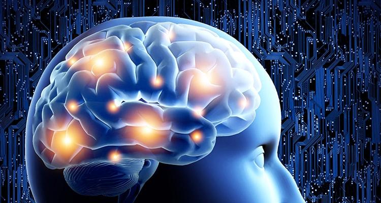 Neurophysiology and Neurophysiology Studies