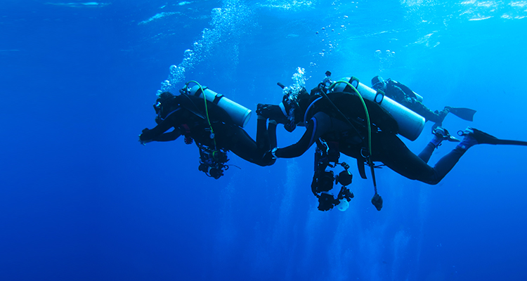 Consulta do Mergulhador | Grupo HPA Saúde